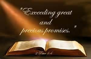 COB Pic precious promises