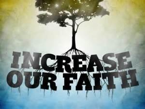 SP faith roots