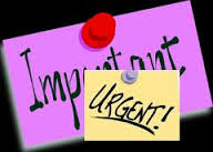 WP Neh dev 6-3 important or urgent
