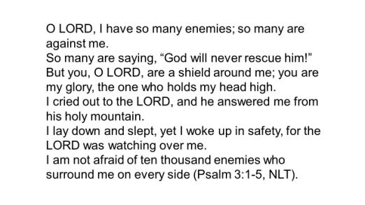 wp-psalm-3